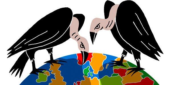 vultures.jpg (1)